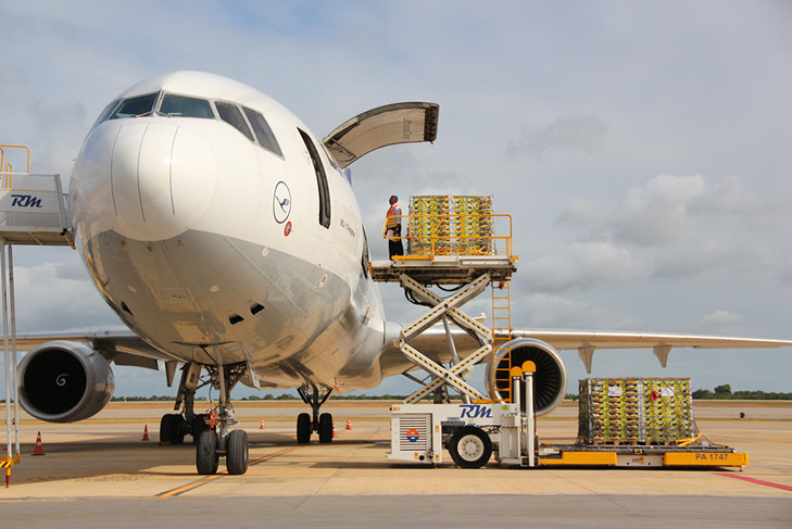 IATA expects 4.5% growth in air cargo demand in 2018